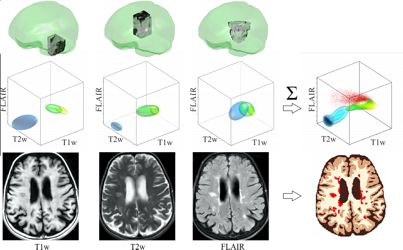Efficient Monitoring of the Development and Treatment of Brain Diseases