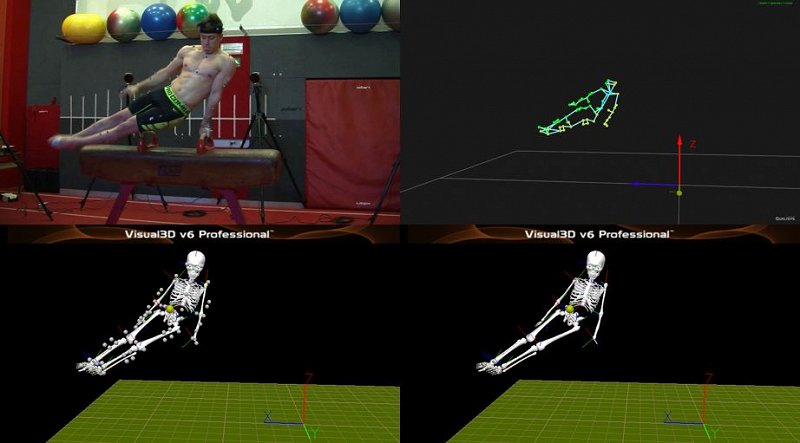 3D kinematics measurement of an elite gymnast on the pommel horse